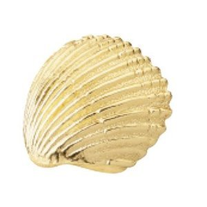 Siro Cabinet Hardware - Ocean Line Collection - Bright Brass Scallop Shell Pull